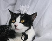 CAT HAT Black & White Mohawk -  ANY Color Made to Order