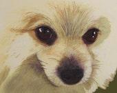 Pomeranian Pet Portrait Embellished Print ACEO