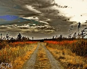 I'll Be Back Soon - A surreal landscape  with red flowers and intense sky Fine art photograph  print 10x15 Ireland