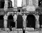 Feeding of the birds Colosseum Rome  10x15 fine art photograph