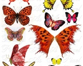 Butterfly Wings in Red, Orange, and Yellow - Set 4 - INSTANT DOWNLOAD - Digital Collage Sheet