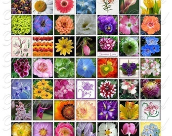 Flowers from Your Garden - Digital Collage Sheet - 3 sizes - Inchies, 7-8 inch, AND scrabble tile size .75 x .83 inch - INSTANT DOWNLOAD