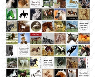 Horses - 3 sizes - Inchies, 7-8 inch, AND scrabble tile size .75 x .83 inch - Digital Collage Sheet - INSTANT DOWNLOAD