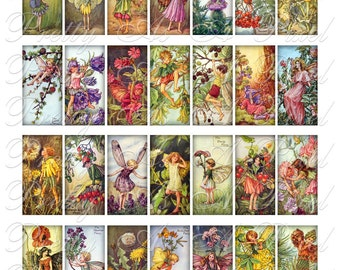 Flower Fairies - 1 x 2 Inch Domino Size - INSTANT DOWNLOAD - Digital Collage Sheet