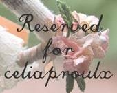 Reserved for celiaproulx