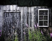A Place to Grow--fine art photograph