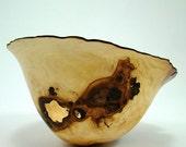 Crispy Apple Burl Bowl
