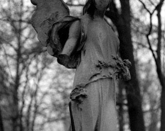Angel in Halle - 8 x 10 Fine Art Print by KC Wilkerson at morpheusdarkart.com