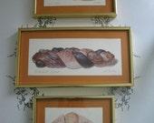 Vintage Set of Bread Prints of Original Watercolors Signed Mounted Framed Alambe