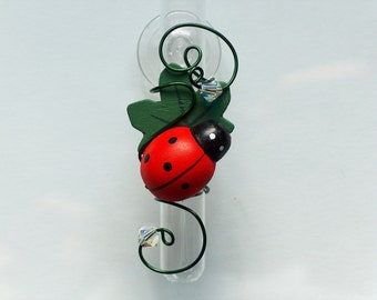 Red Lady Bug Suction Cup Vase Glass Rooting Vase Suction Cup Bud Vases Glass Window Vase