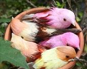24 Pastel bird ornaments, Party decorations