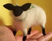 Wool Wrapped Lamb