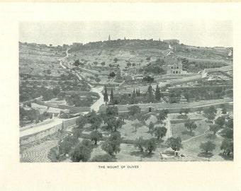 1903 Landscape Photograph - Mount of Olives Jerusalem Israel - Vintage Antique Art Print History Geography Great for Framing 100 Years Old