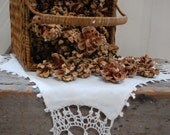 Aromatic Pinon Pinecones Fresh Picked One Pound Nature Holiday Crafting Supply