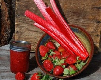 Organic Strawberry Rhubarb Jam 8 oz Colorado Grown Farmers Market