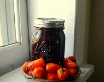 jam Blackberry Habanero  Farmers Market  8 oz Hot Pepper Party Appetizer