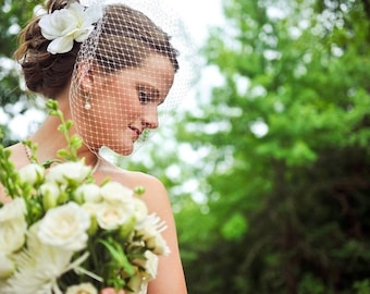 Bridal Birdcage Veil  as seen in StyleMePretty blog-- Ready to Ship
