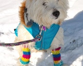 Rainbow Love Doggie Legwarmers - Small