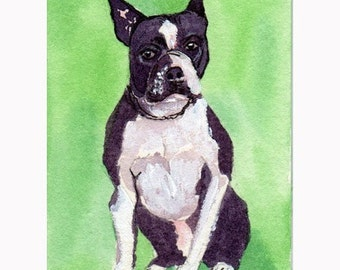 ACEO print  Boston Terrier