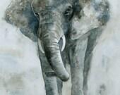 Art Elephant Wall art boy room decor (8 x 10 elephant nursery print /elephant nursery art print) in gray grey blue brown