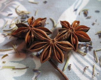 Star Anise 1 pound for tea blending, salve and crafts