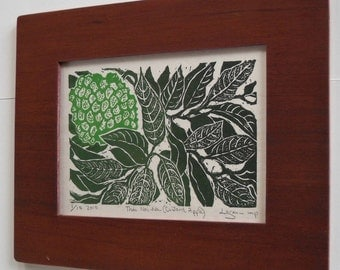 Custard Apple, limited edition lino block print, framed in birch, signed and printed by Lagana