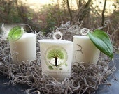 New Organic SWEET APPLE JASMINE all natural essential oil vegan votive candle aromatherapy spa eco friendly earth