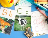 MOSTLY ANIMALS Alphabet Flashcards (double-sided)