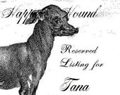 RESERVED for Tana- 60  Horse tags