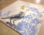 bird art - Bluebird in Pencil - original pencil drawing on 12 x 12 scrapbook paper