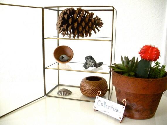 Brass and Glass Treasure Display