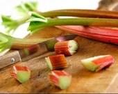 Organic Victoria Rhubarb Heirloom Vegetable Seeds
