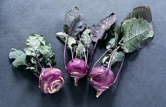 Organic Kohlrabi Early Purple Vienna Heirloom Vegetable Seeds