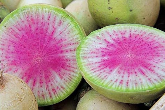 Organic Watermelon Radish Heirloom Vegetable Seeds