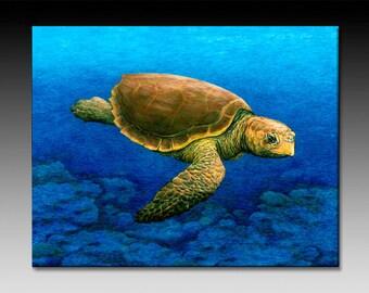 Loggerhead Turtle Art Ceramic Tile Wall Art