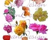 Roses Digital Collage Sheet, red, pink, yellow, orange, lavender, No. 50