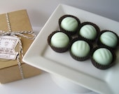Chocolate Mint Bon Bon Soap Set-Goat's Milk Soap