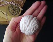Honey I Shrunk My Brain-New Cotton Candy Scented Brain-Goat's Milk Soap