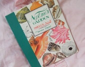 Neptunes Garden Gorgeous Vintage Destash Picture Book Of Hand painted Sea Shells Womens Gift