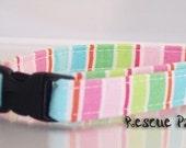 Cat Collar Pastel Lollipop Stripe