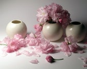 White Porcelain Vases - Mid Size - Wedding Edition - Set of 3 - HOLIDAY SALE