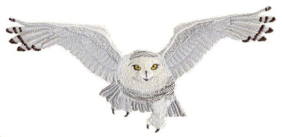 Snowy White Owl Drawing Guardian Icy Snowy Owl in
