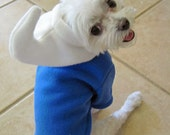 Blue Gnome Boy Halloween Dog Costume