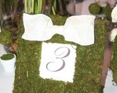 Moss Covered Frame Wedding Party Table Numbers