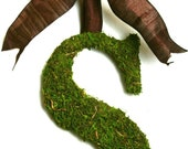 Country French Moss Covered 12 inch initial Brown Silk Ribbon