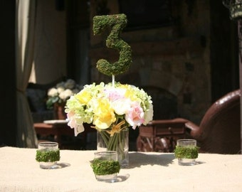 Moss Covered 6 inch Table Number WEDDING party centerpiece