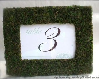 Moss Covered Wedding Party Table Numbers Picture Frame