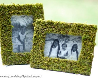 Small 4x6  Moss Frame