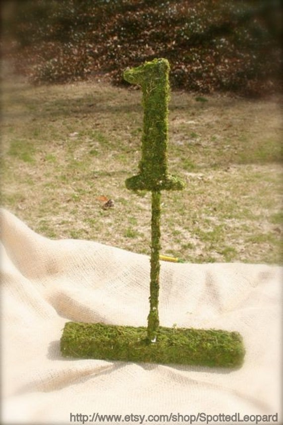 Moss Covered 6 Inch with stand Wedding party Table Reception Table Numbers