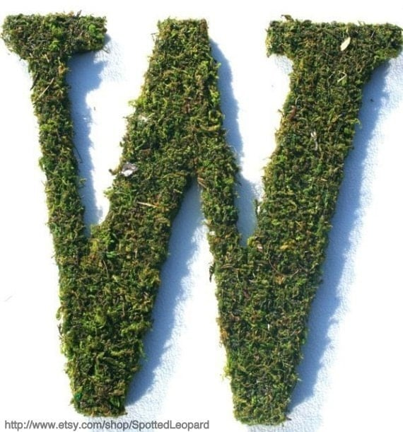 Moss Covered 12 inch initial letter W